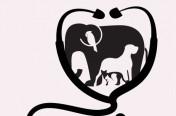 Logo-Dierenarts